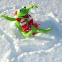 Snow day - Kermit